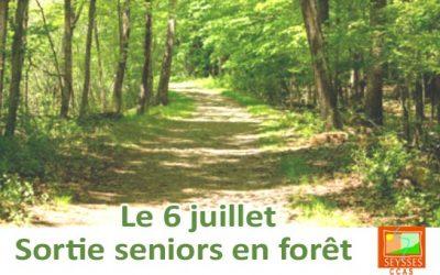 CCAS – Sortie seniors en forêt