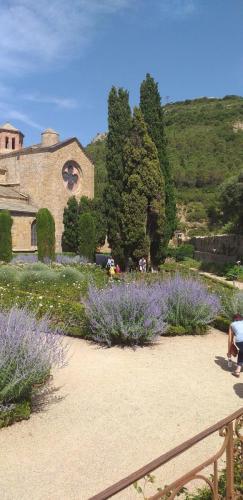 CCAS 25 06 19 Abbaye de Fontfroide 11