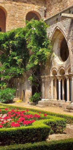 CCAS 25 06 19 Abbaye de Fontfroide 22