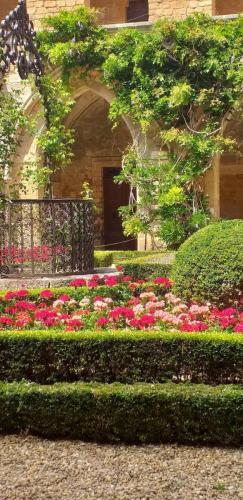 CCAS 25 06 19 Abbaye de Fontfroide 23