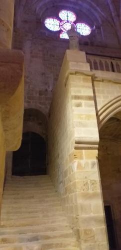 CCAS 25 06 19 Abbaye de Fontfroide 26