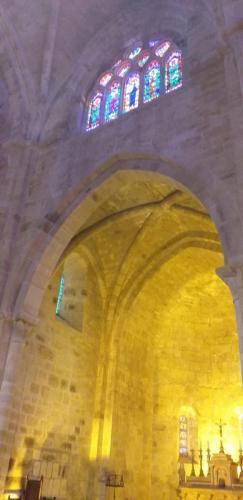 CCAS 25 06 19 Abbaye de Fontfroide 28