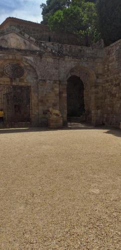 CCAS 25 06 19 Abbaye de Fontfroide 37