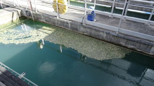 PRS usine de l'eau 15 10 19 09