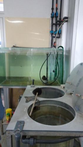 PRS usine de l'eau 15 10 19 18
