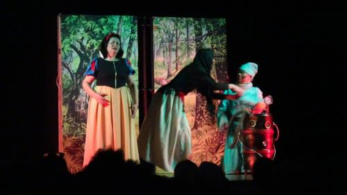 Spectacle blanche neige 01 03 20 09