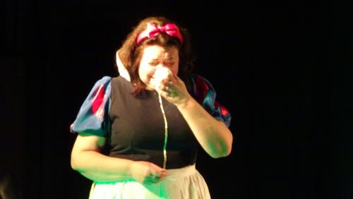 Spectacle blanche neige 01 03 20 30