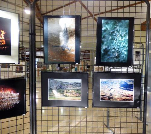 Galerie 3/5 ART EXPO - 61 à 100/150