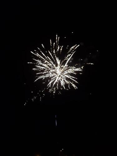 Feu artifice 13 07 2019 (07)