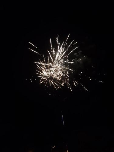 Feu artifice 13 07 2019 (08)