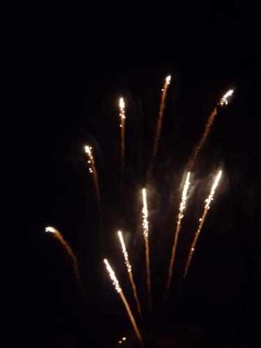Feu artifice 13 07 2019 (11)